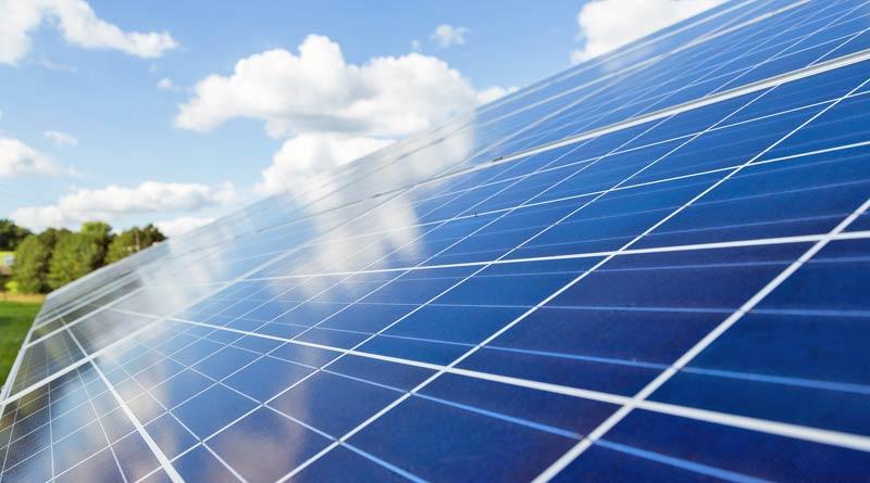 Veganer Strom durch Sonnenenergie