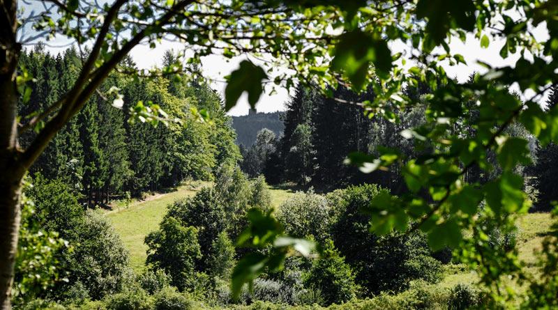 Camping-im-Erzgebirge